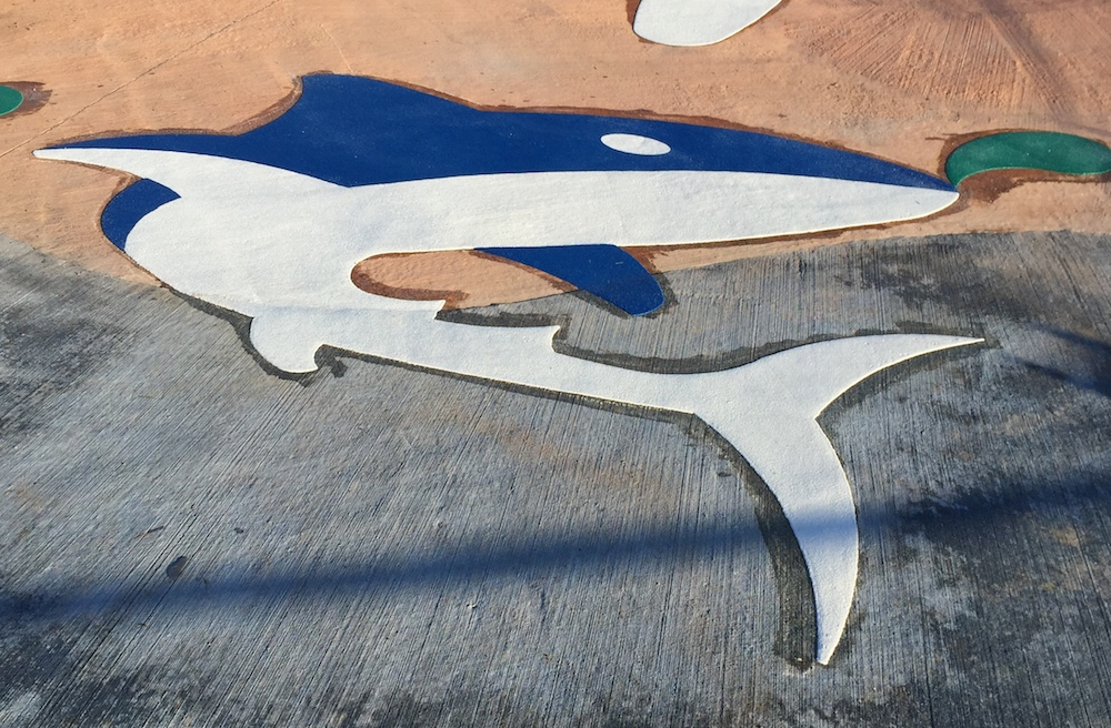 Playground Markings Shark