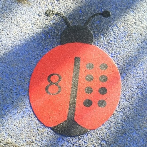Counting-Ladybirds-2